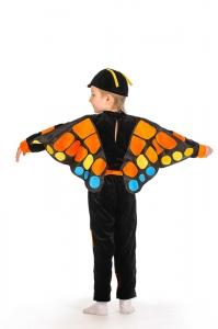 Бабочка Махаон мальчик